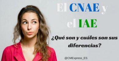diferencias CNAE IAE