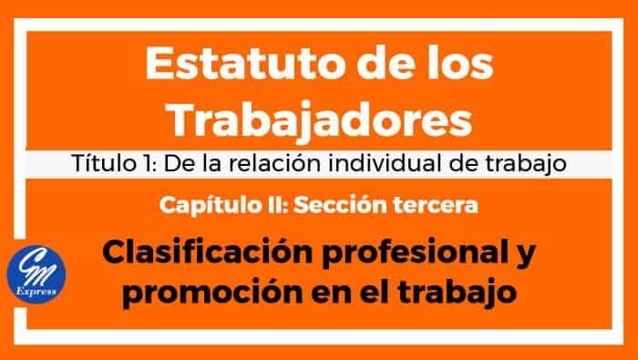 Clasificación profesional y promoción en el trabajo – Est.Trabajadores
