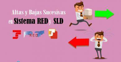 Altas y bajas Sucesivas - Sistema RED - SLD